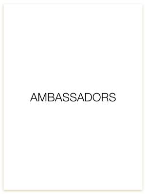 Board Cards.Ambassadors